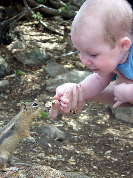 sweeet babies Baby-and-squirrel-1a